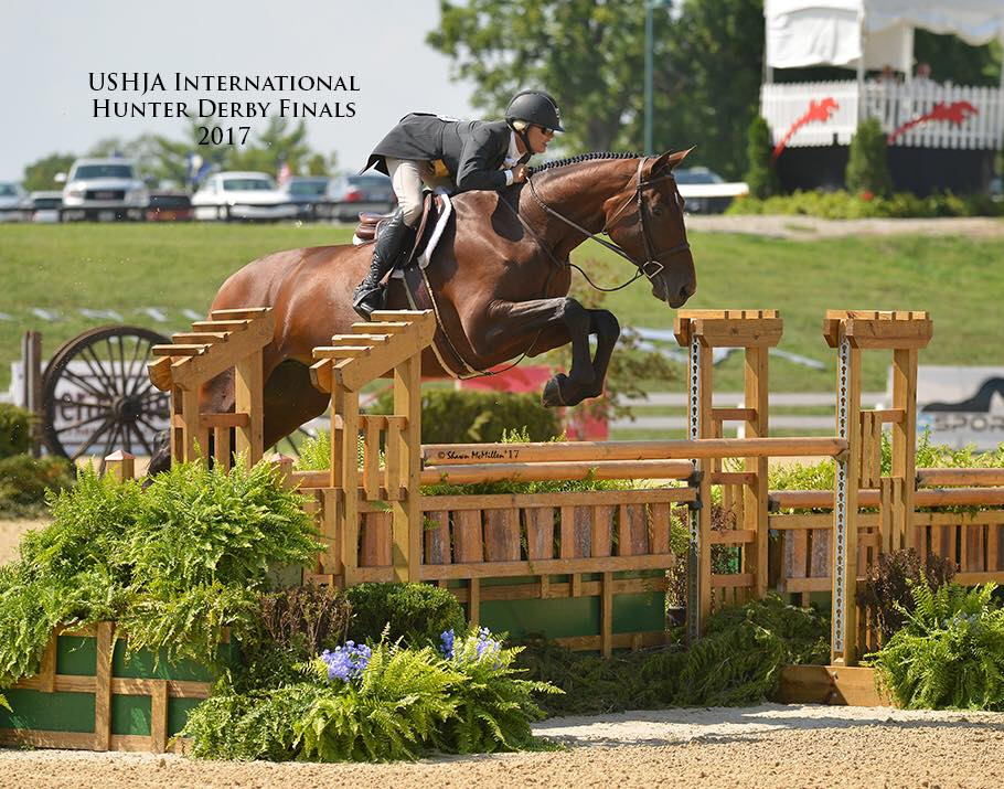 Holly Shepherd and Gracie cruising to 4th place in the $10,000 Derby Challenge at the USHJA International Hunter Derby Championship.
