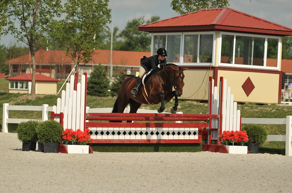 Cynthia and Gracie showing in the Adult Amateur Hunters at HITS Chicago.