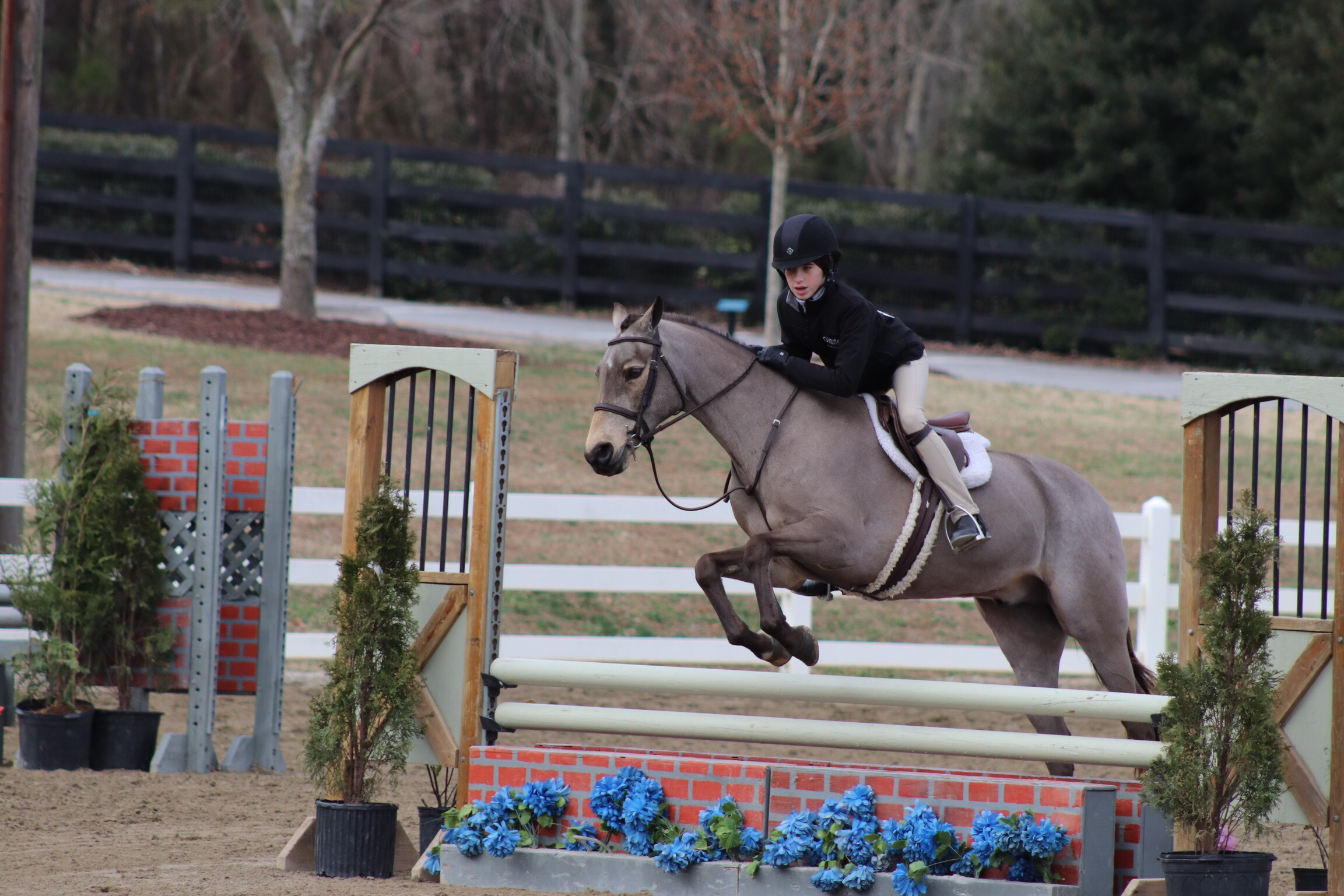 Mimi and Spirit tackled the Large Pony Hunters together.