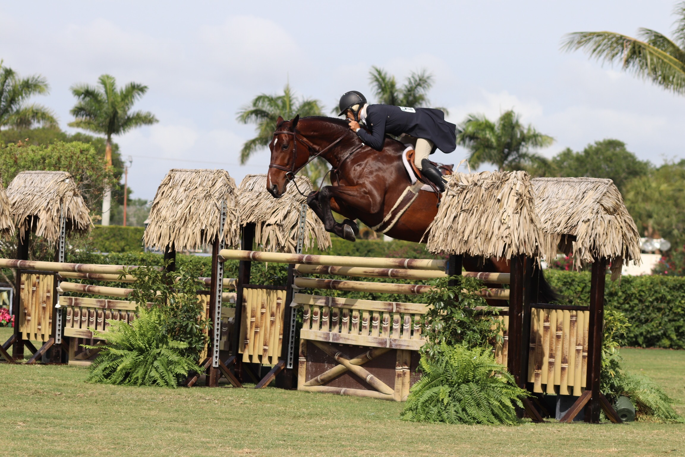 Holly and Gracie jumped all four high options available during the derby.