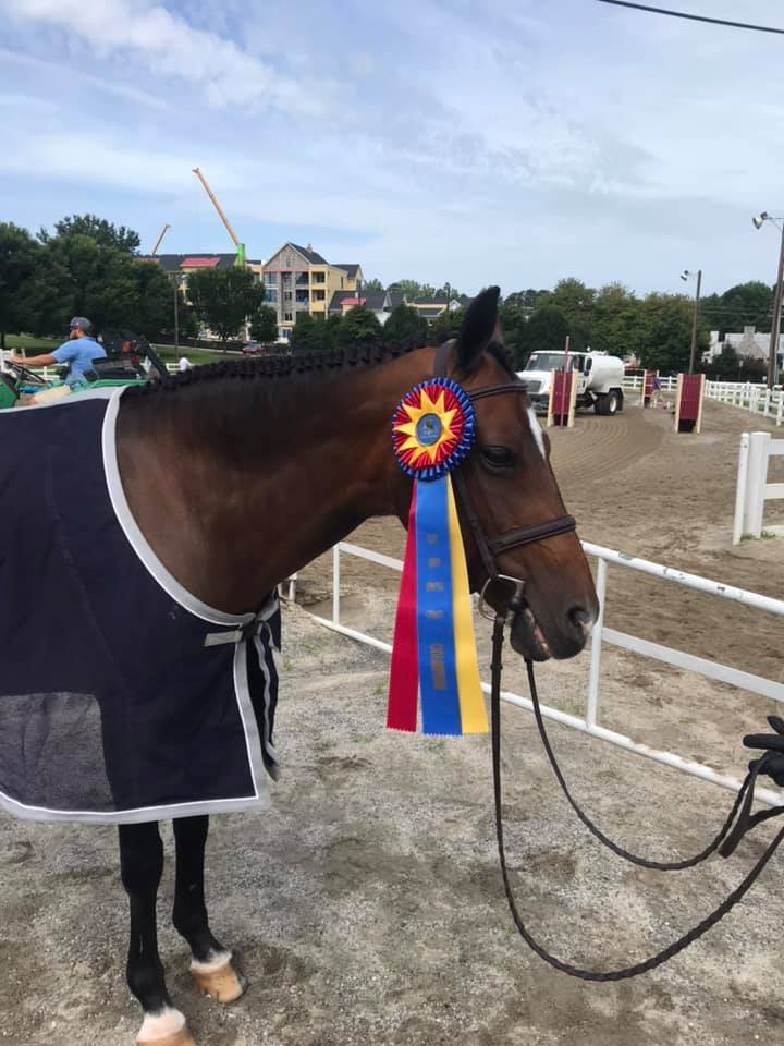 """Eva"" with her champion prize."