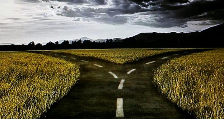fork in the road.jpg