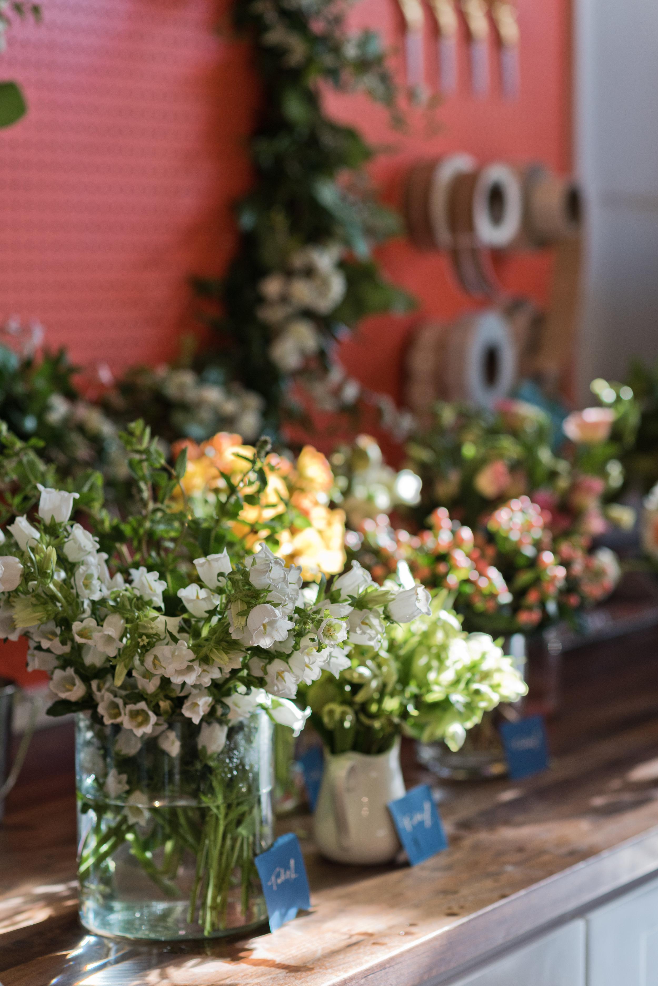 petal-and-fold-candlefish-workshop-july-2018-6.jpg