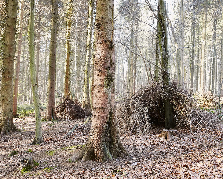 Shelter - Chris Hoare