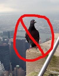 No pigeon holes. Attribution: http://www.cgpgrey.com