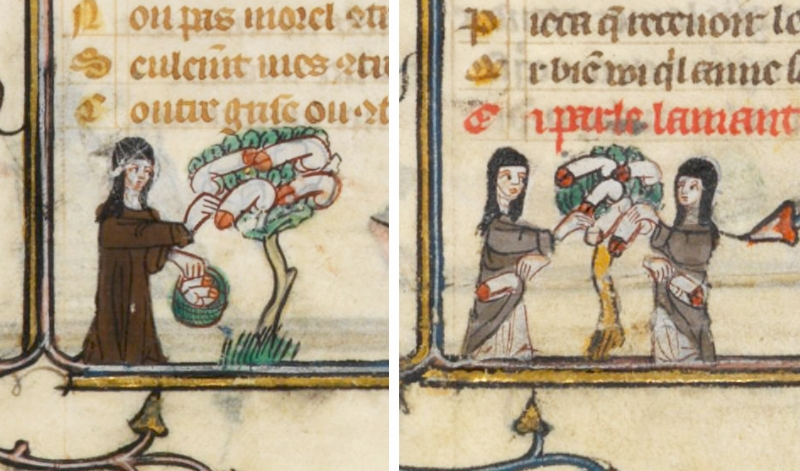 "Marginalia from the "" Roman de la Rose "" (France, 14th c.)"