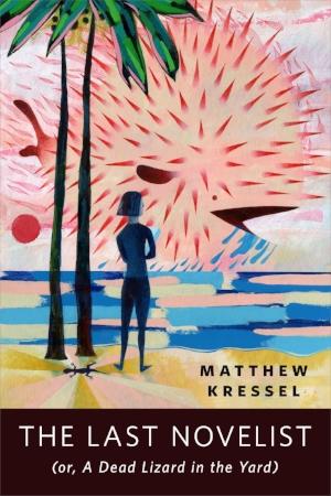 The-Last-Novelist-Cover.jpg