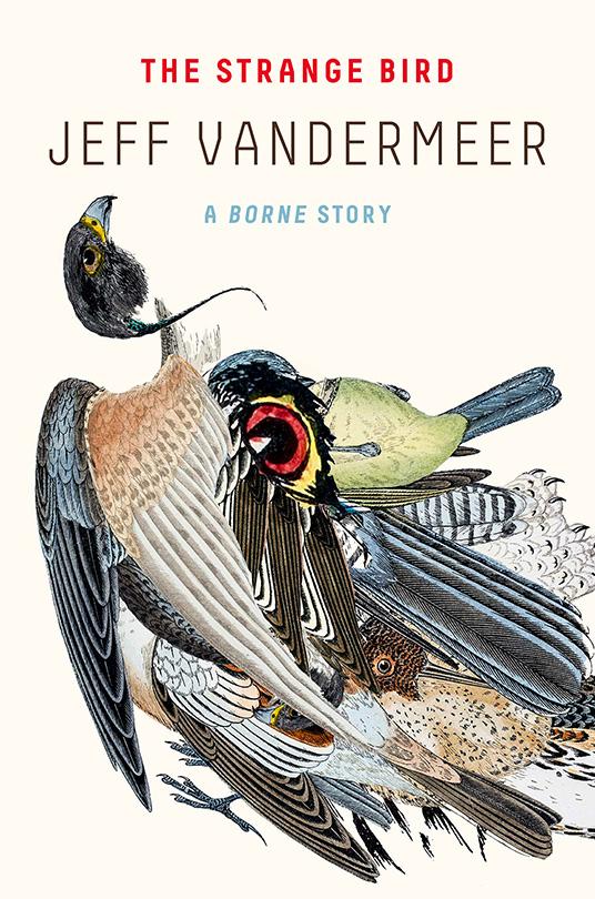 the-strange-bird-cover.jpg