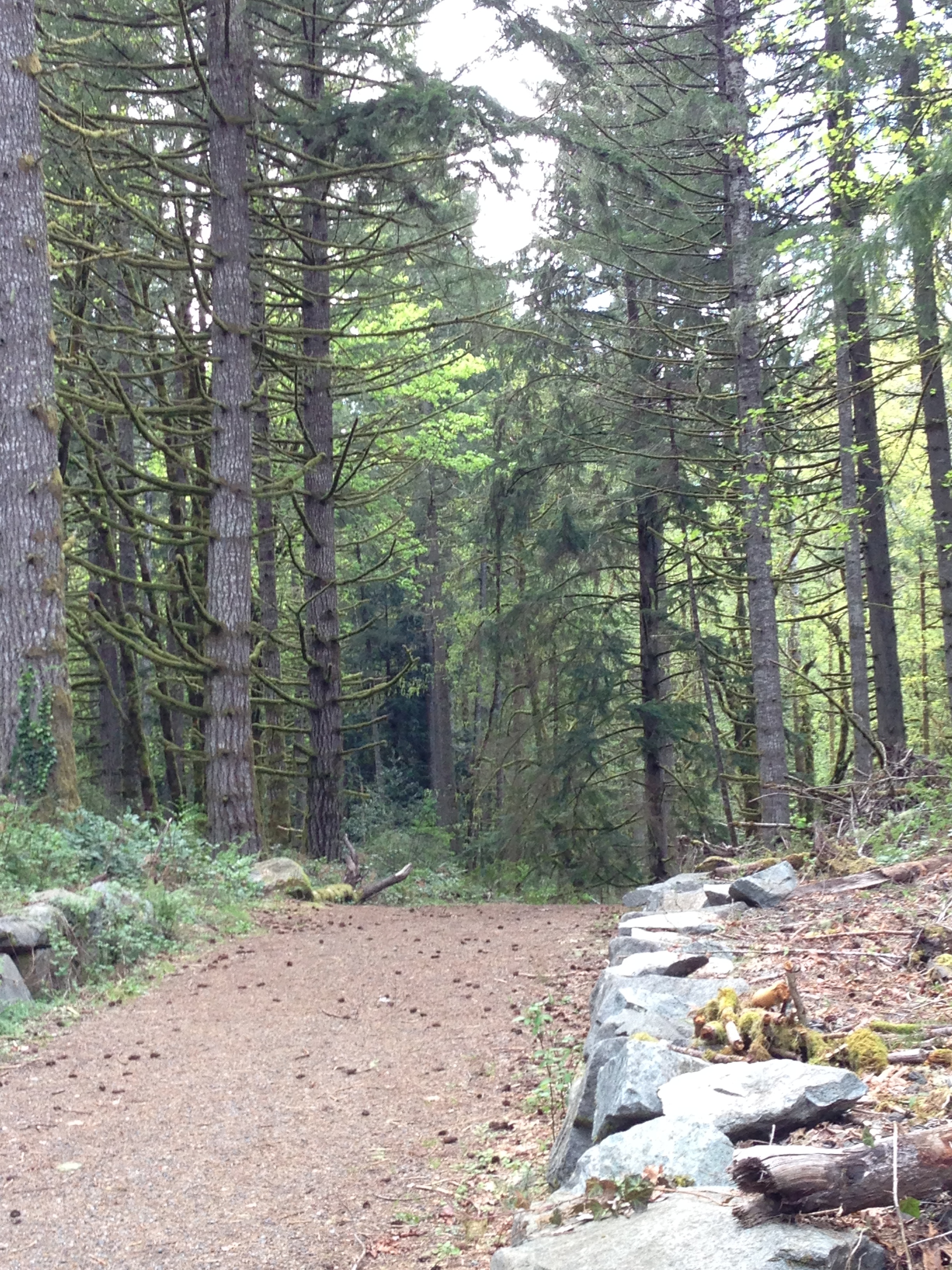 Evergreen - Trail to Organic Farm