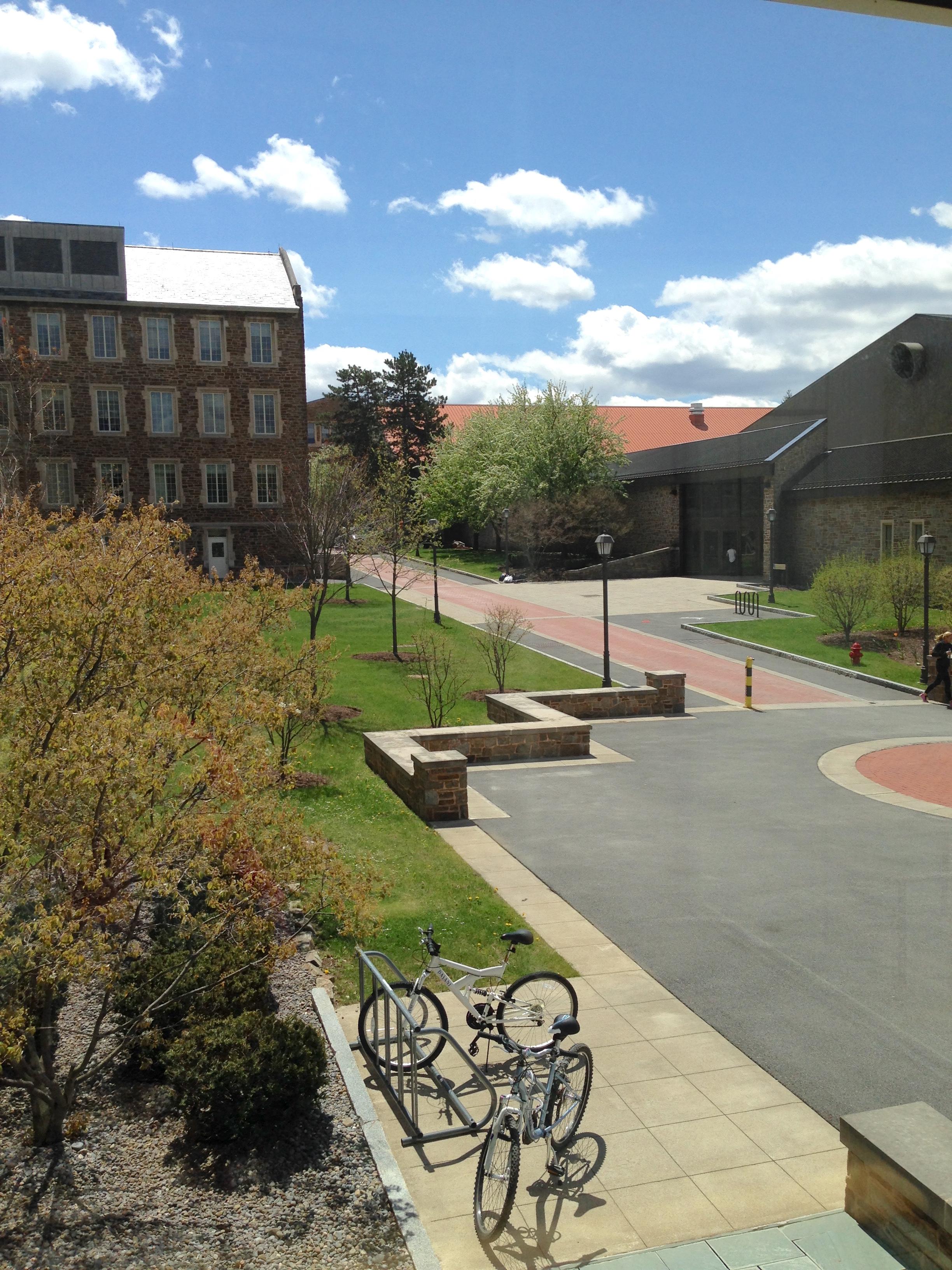 hamilton college—martin's way