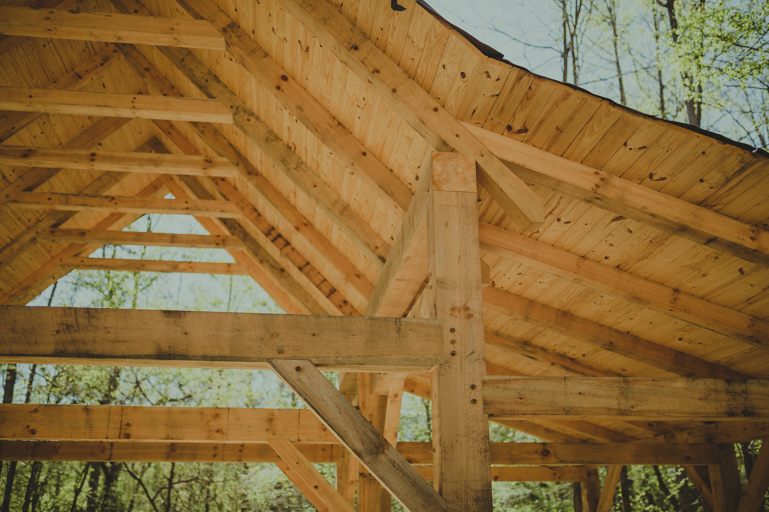hand crafted workshop outbuilding timber frame eastern white pine athens georgia