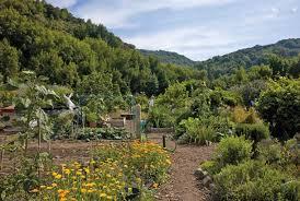 The beautiful Hidden Villa Organic Farm.