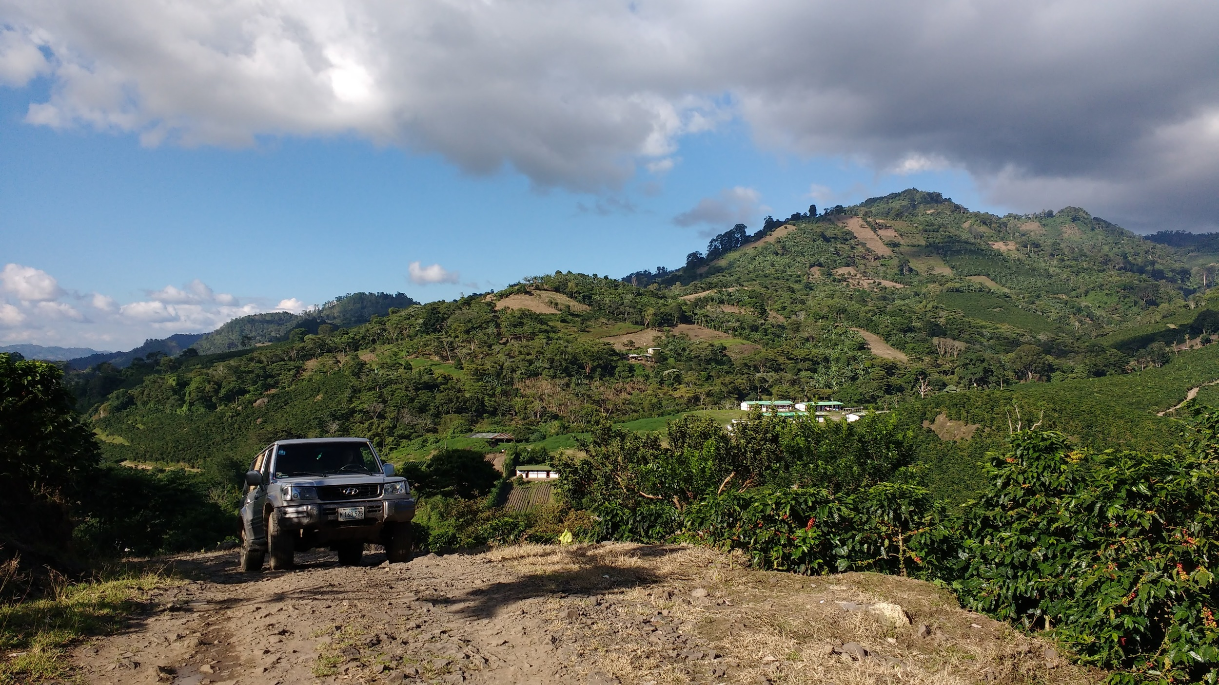 Large coffee farm near Colibrí Headquarters — Grid solutions are challenging in this terrain and aren't necessarily the best option.