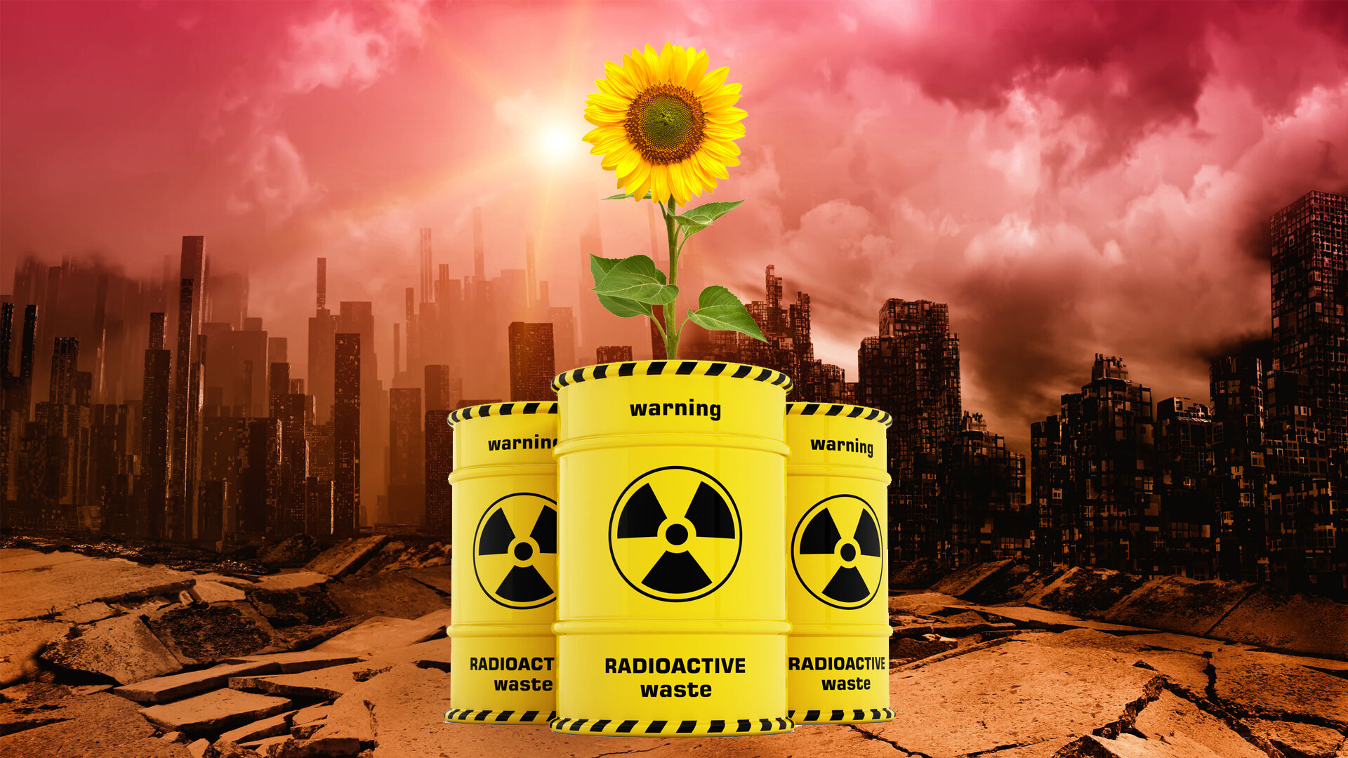 75: Sunflowers can help clean radioactivity from soil.  https://www.youtube.com/watch?v=c2pQ9guh27s