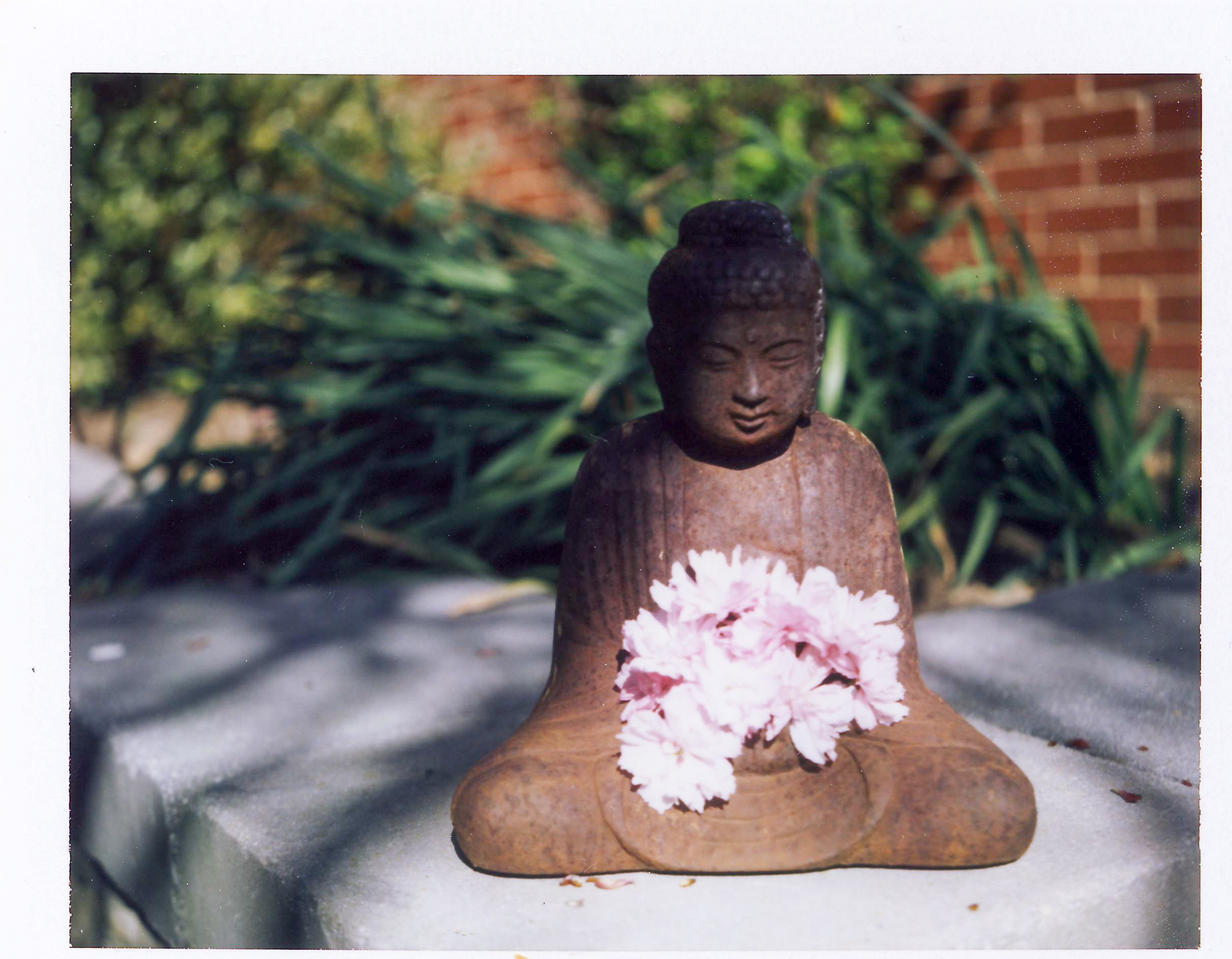 56 Buddha and the Cherry Blossoms.jpg