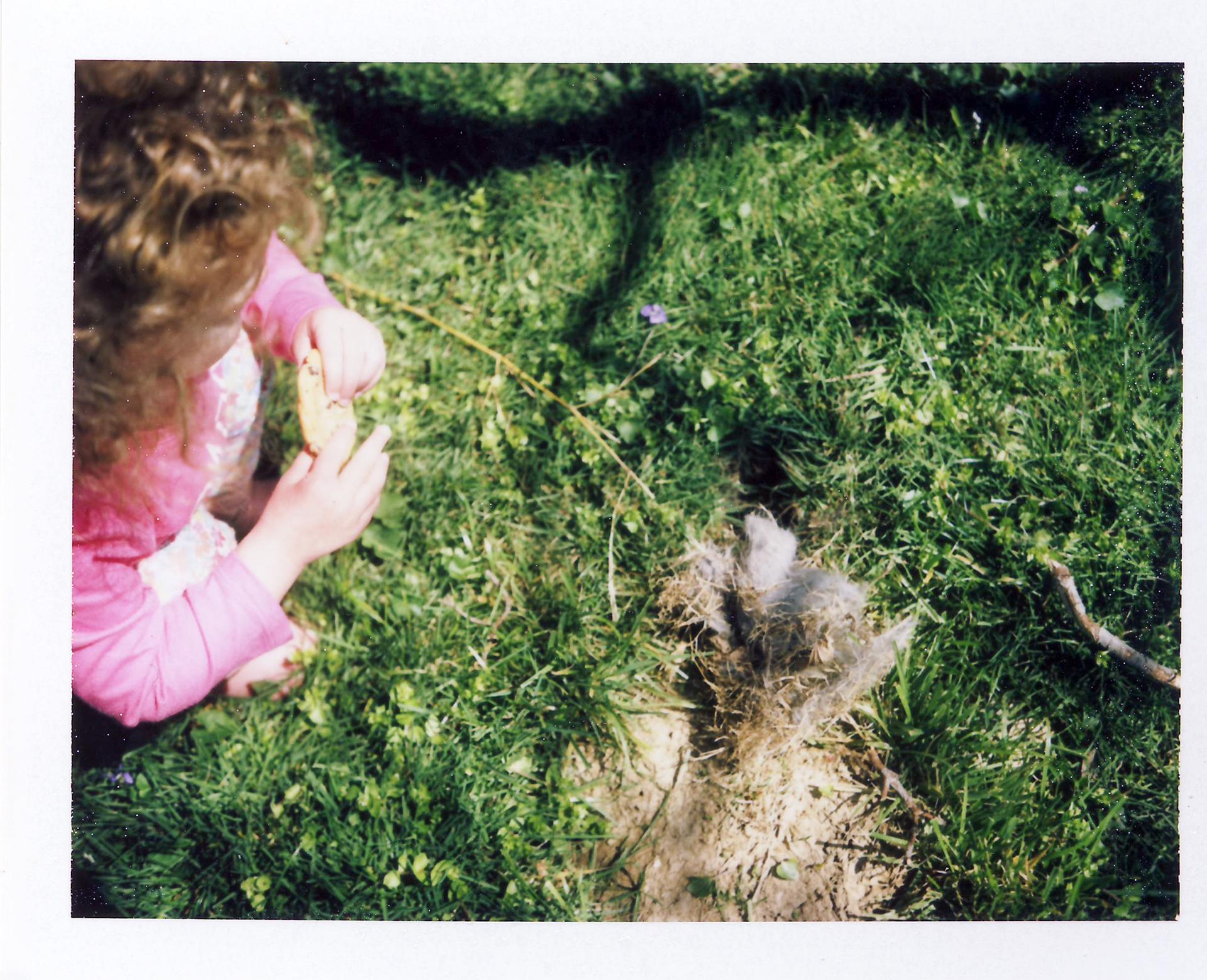 62 The Rabbit Hole.jpg