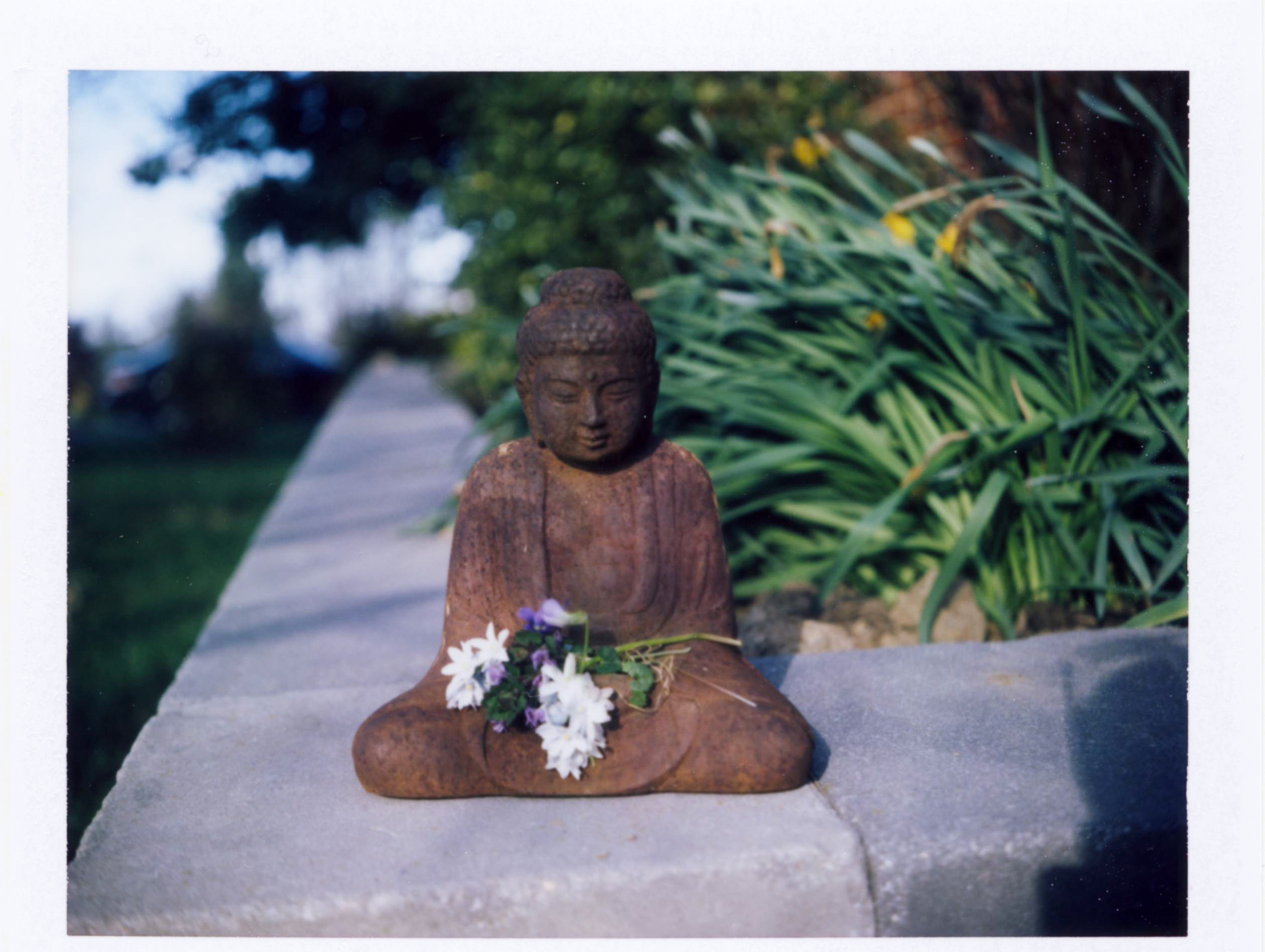 69 Buddha Welcomes Spring.jpg
