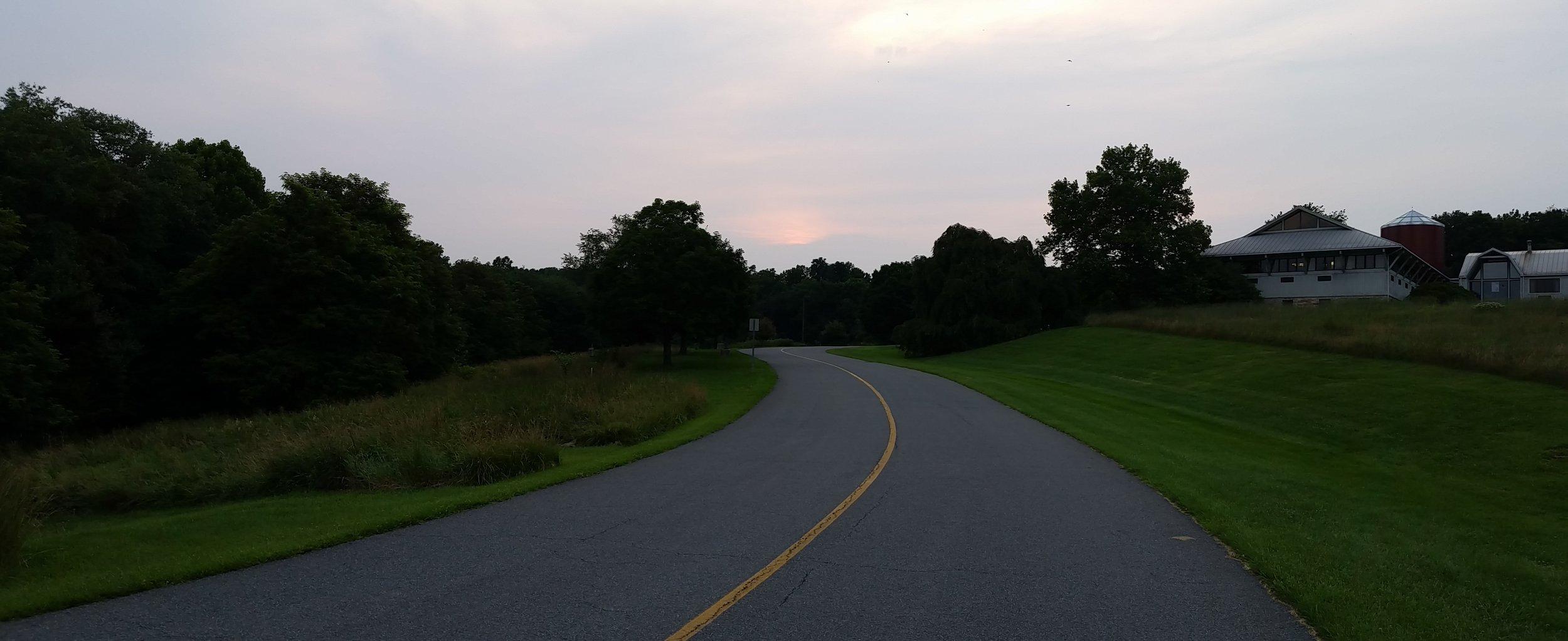 Path1 (1).jpg
