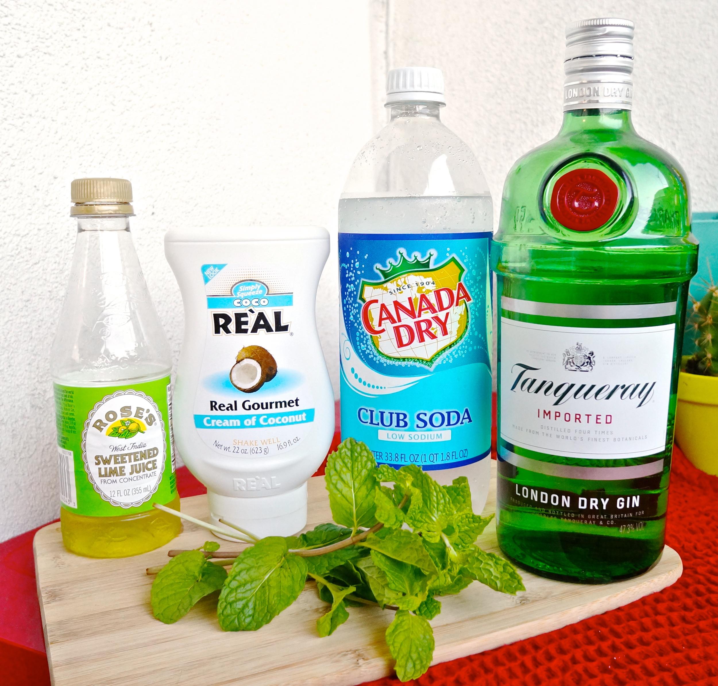tiki-mug-monday-coconut-gin-fizz-ingredients.jpg