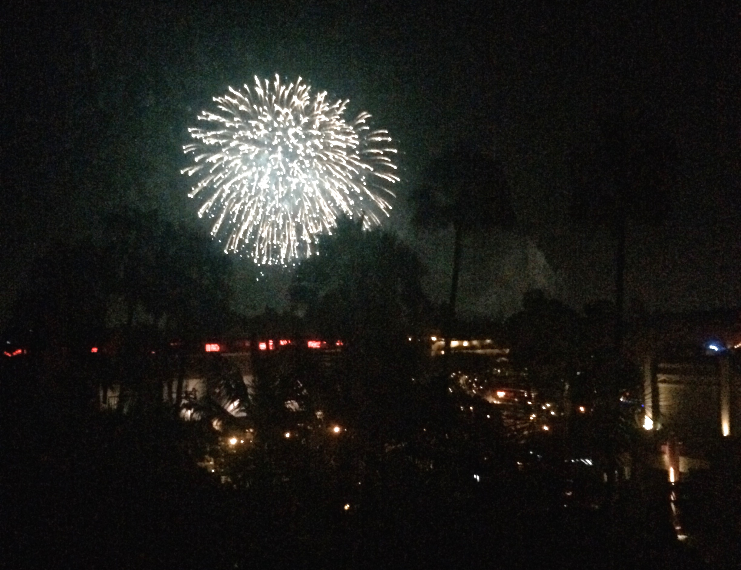 fireworks-from-disneyland-hotel-room.jpg