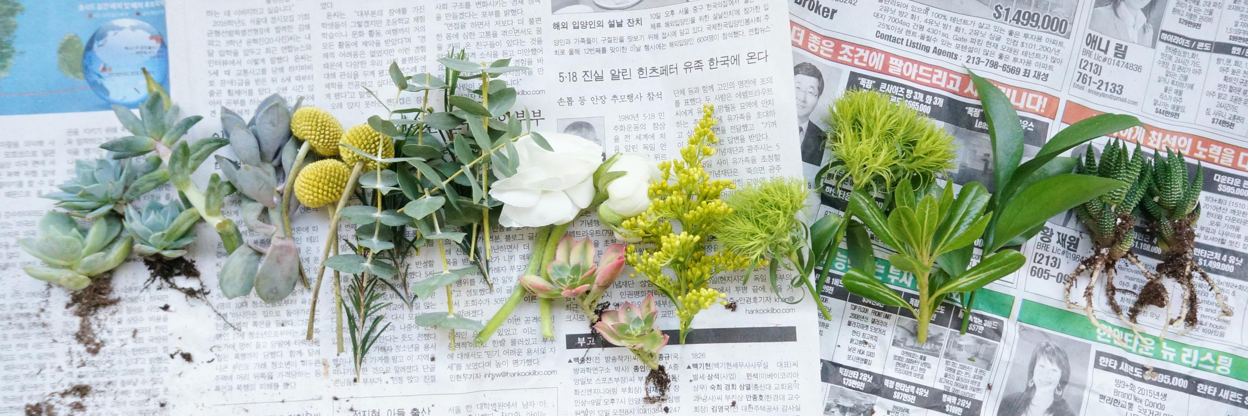 boutonniere-plants.jpg