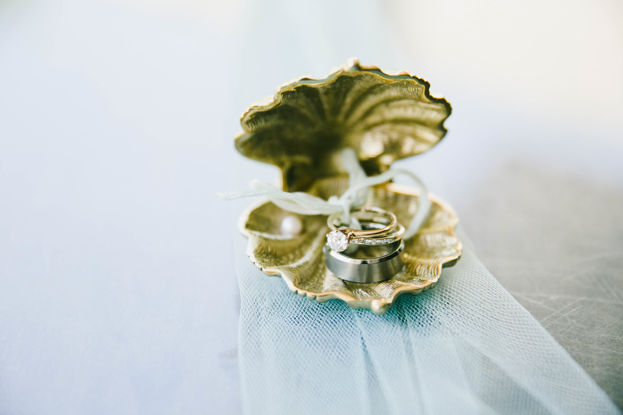 modern-tiki-wedding-rings-clamshell.jpg