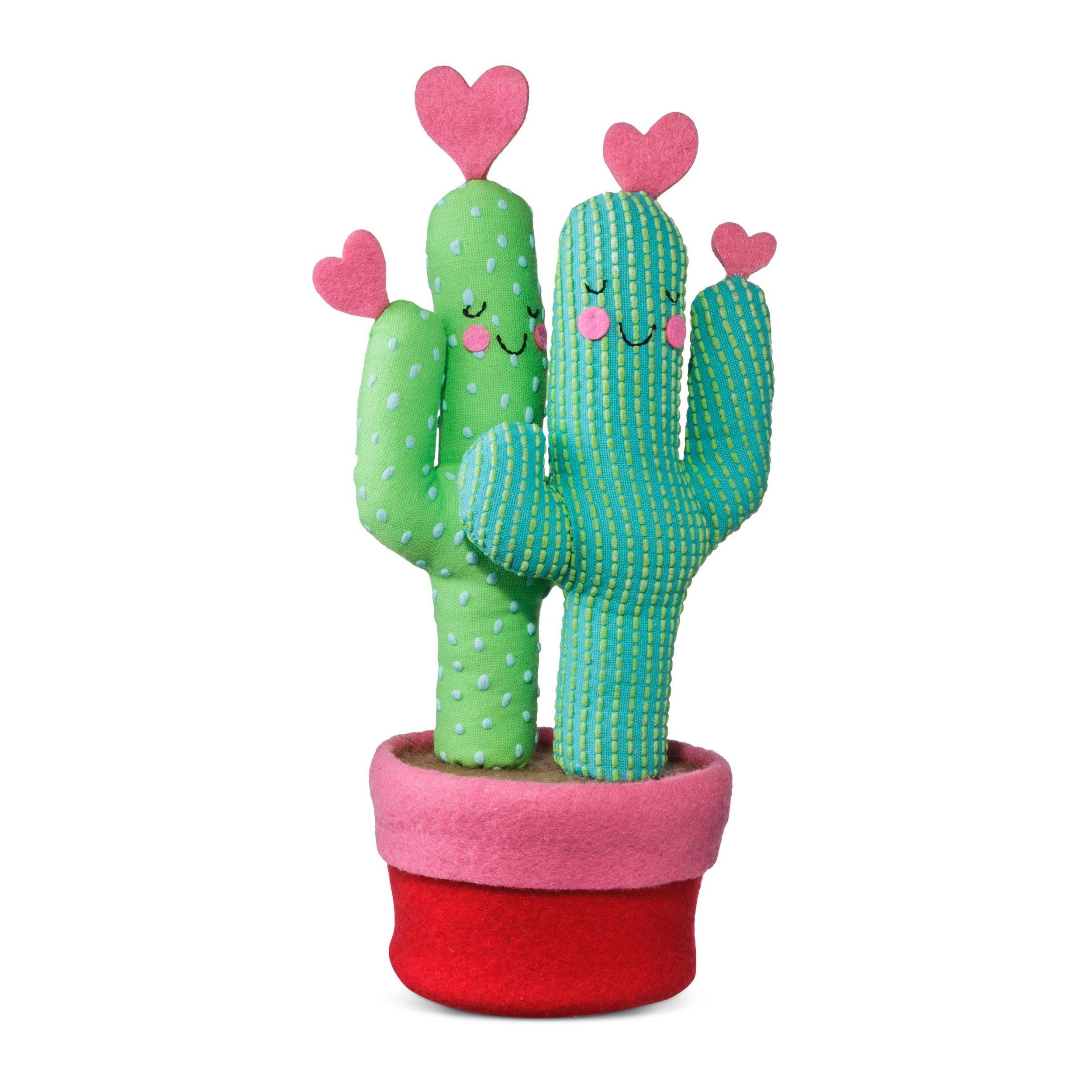 valentines-day-cactus.jpg
