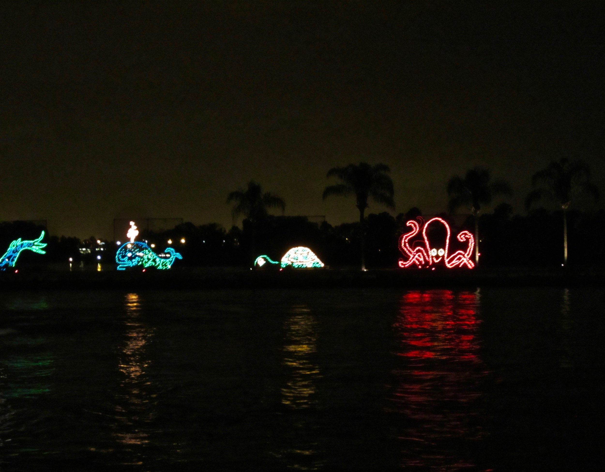 electrical-water-pageant.jpg