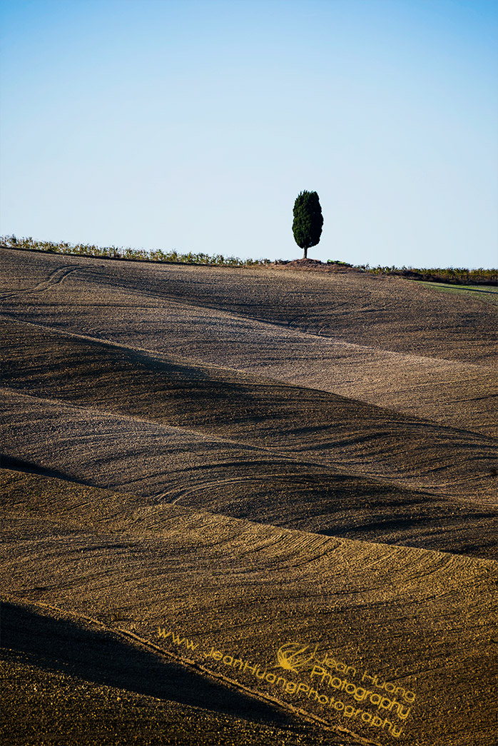 Lone-Tree-on-Top-of-Hill-of-Waves-Val-d'Orcia-Tuscany-Italy-Copyright-Jean-Huang-Photography