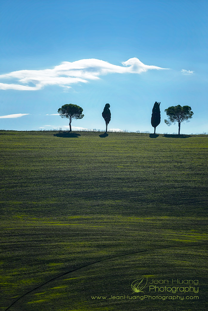 Cloud-in-the-Shape-of-Bird-Flying-over-Tree-Lined-Hilltop-Val-d'Orcia-Italy-Copyright-Jean-Huang-Photography
