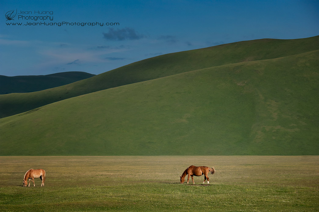 Horses-Grazing-at-the-Foot-of-Painterly-Mountains-Castelluccio-di-Norcia-Umbria-Italy-Copyright-Jean-Huang-Photography