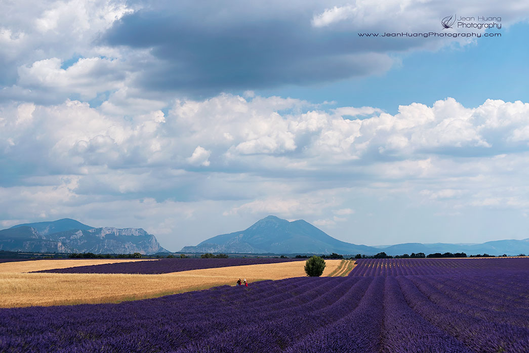 Under-the-Provencal-Sky-Valensole-Provence-France-Copyright-Jean-Huang-Photography