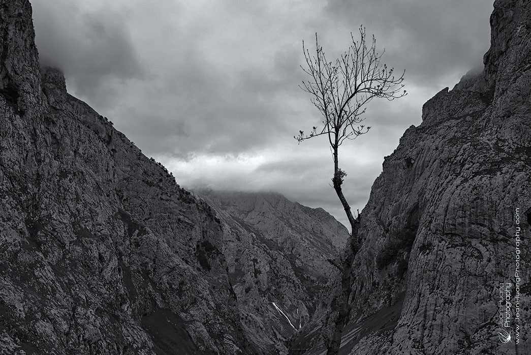 Touching-the-Sky-Bulnes-de-Arriba-Spain-Copyright-Jean-Huang-Photography