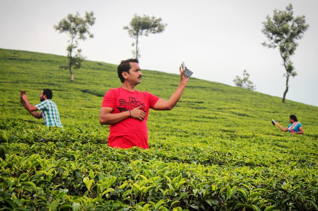 Book: Field Guide to the Native Tourists of South India — in Munnar.