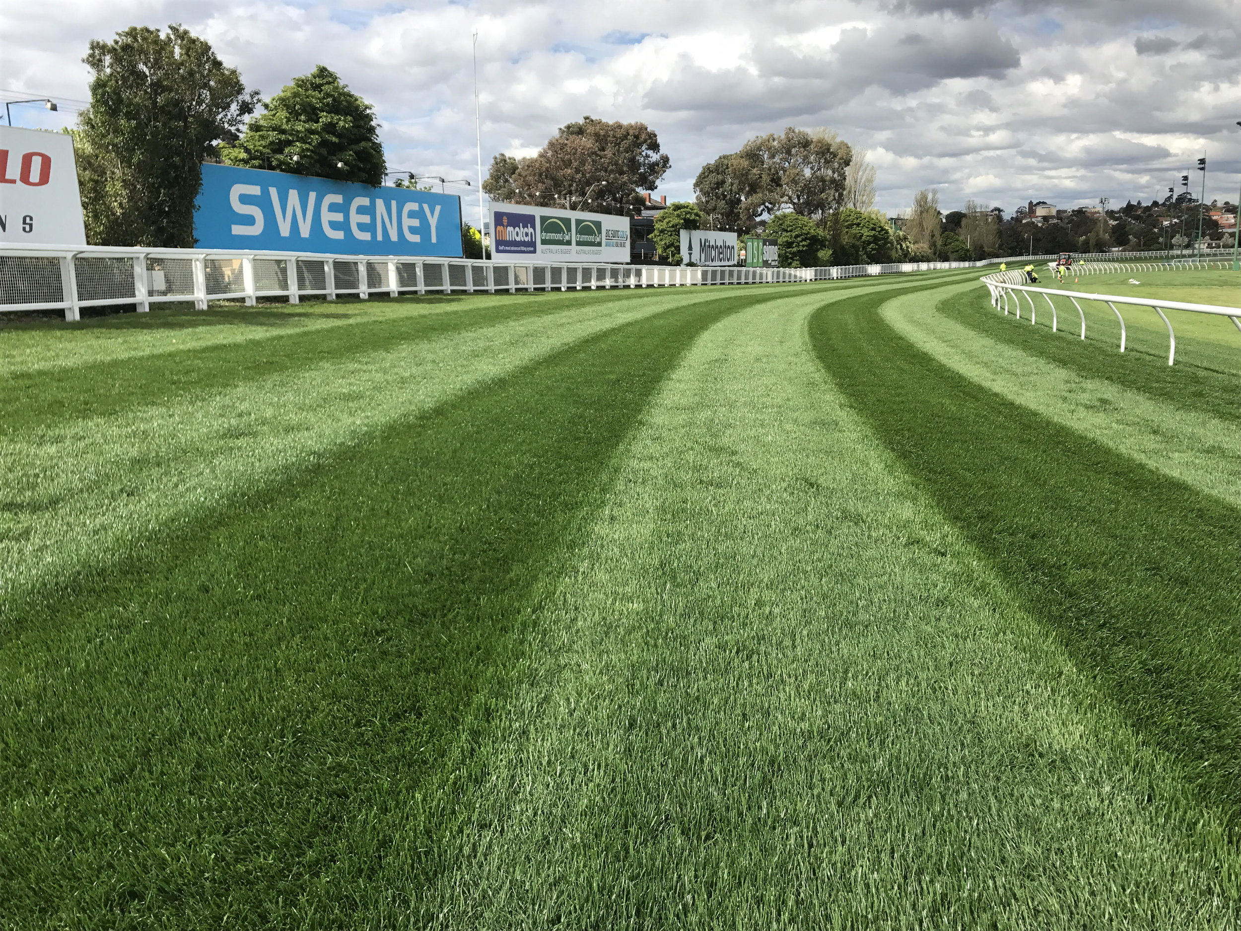 Turf looking immaculate, but before the straight, the rail is currently the place to be.