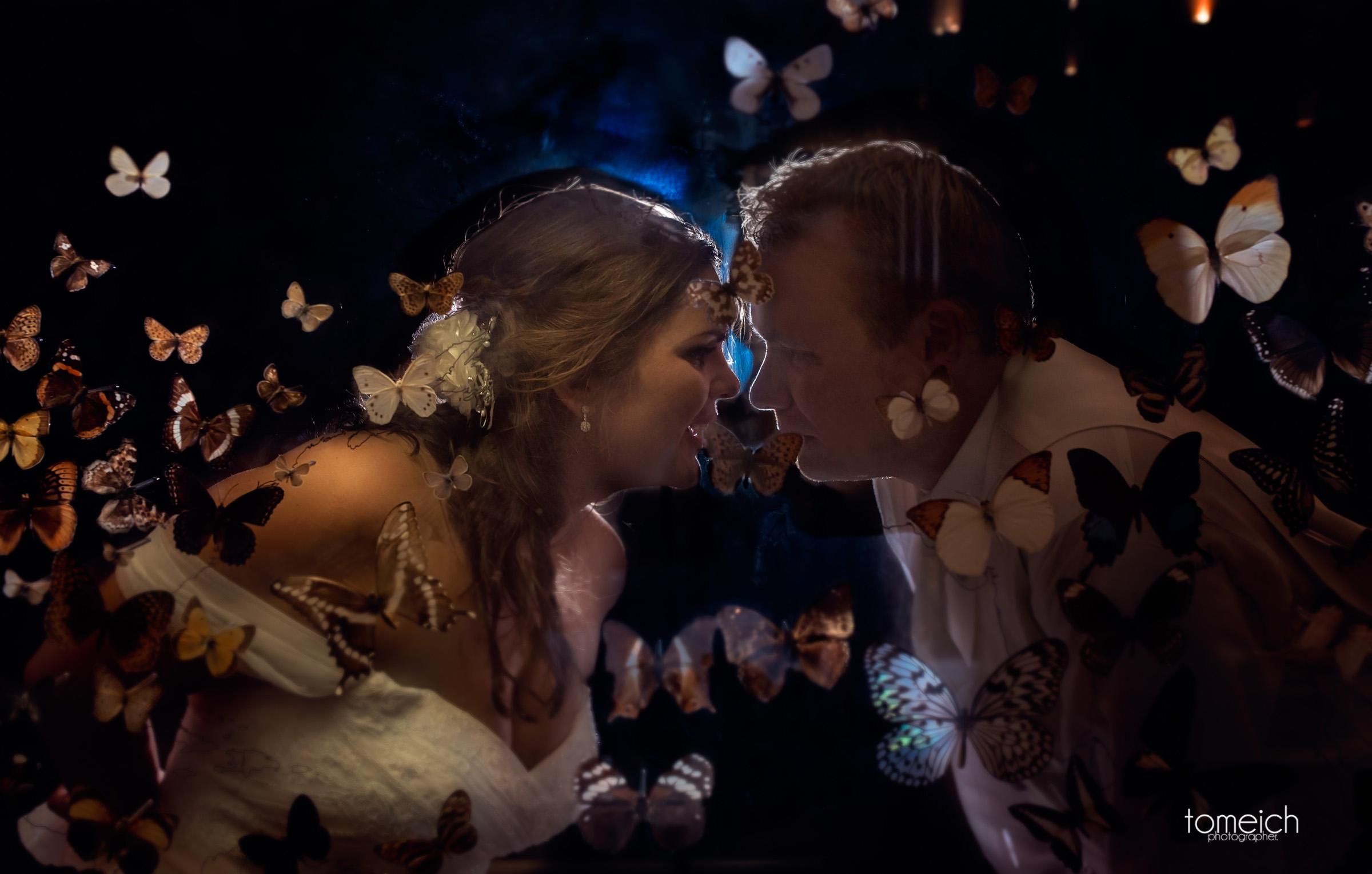 butterfly house wedding chesterfield-42.jpg