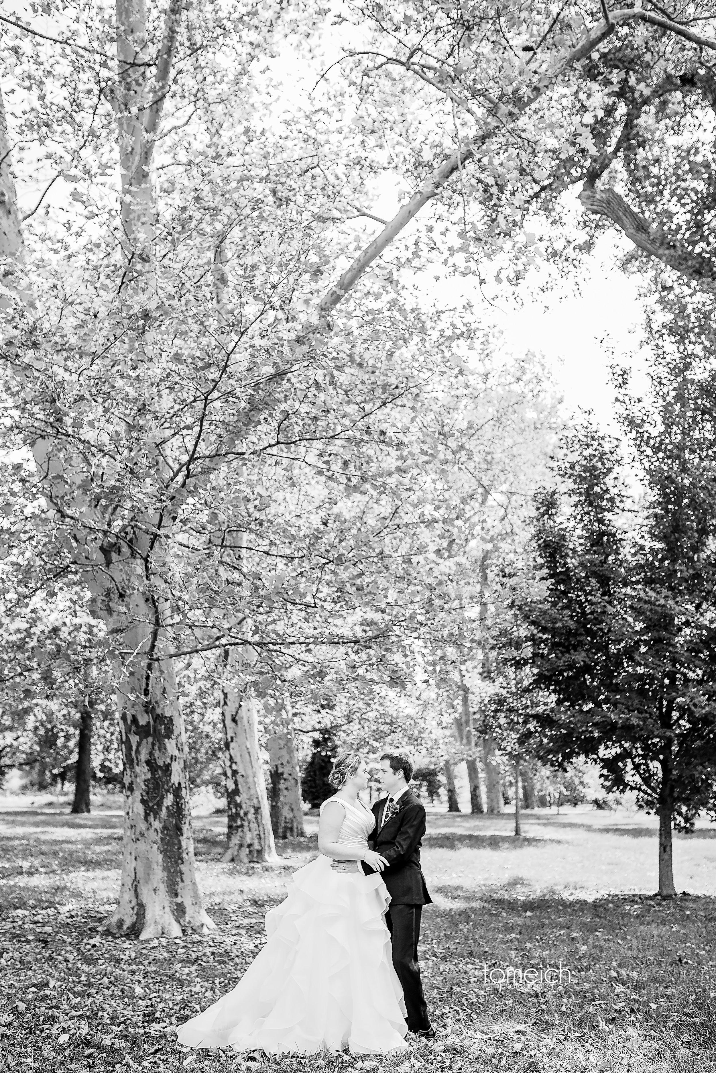 lake saint louis wedding photographer-0020.jpg