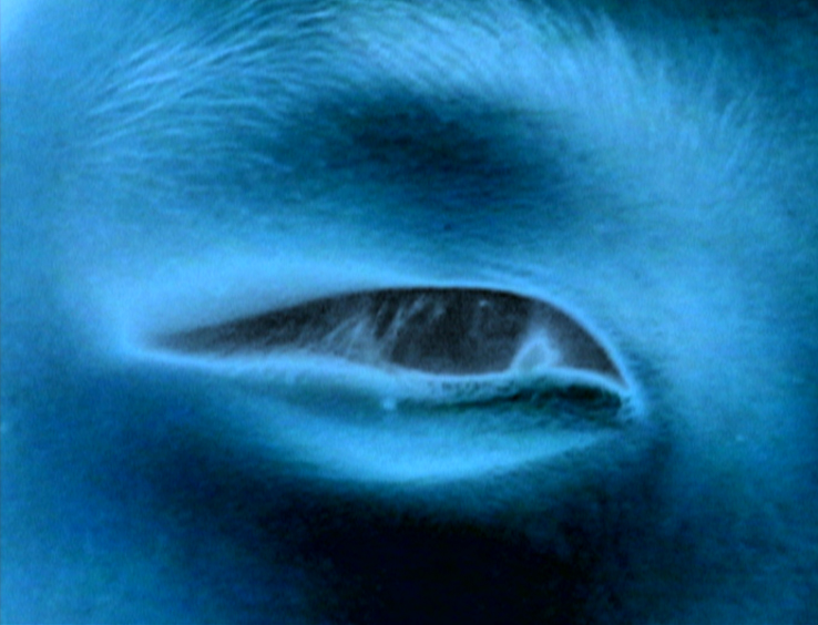 Cahen-Sept-visions-fugitives.jpg