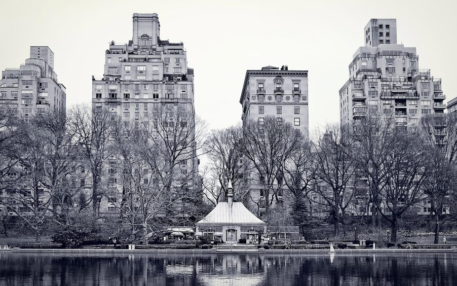 new-york-central-park-black-and-white.jpg