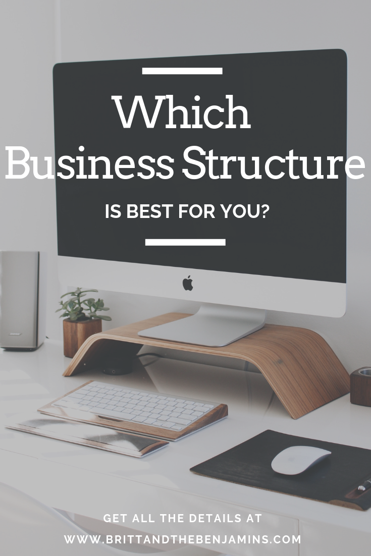Business structure type