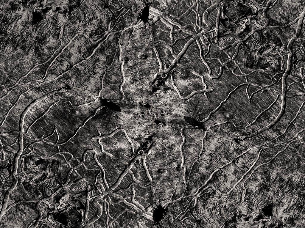 Billy Hare. ARB 20016 _ 2018. 80 x 111 cm. Impresión por inyección de tinta sobre photo rag Hannemuhle. Copia única (1).jpg