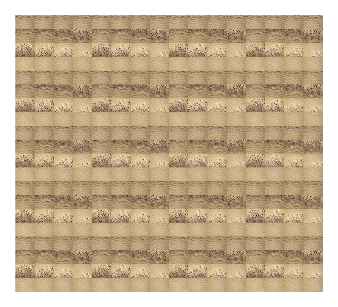 Billy Hare. VC ColPE 1425. Serie Geografía (Variables continuas), 2010.Impresión por inyección de tinta sobre papel de algodón. 110 x 100 cm. Pieza única.JPG