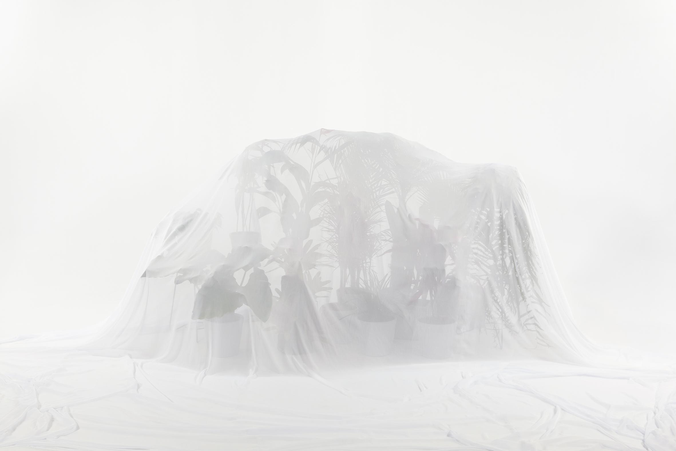 Resistencia II, Fotografía digital sobre papel de algodón Satín de Hahnemulle, 100 x 150 cm, ed. 3/3