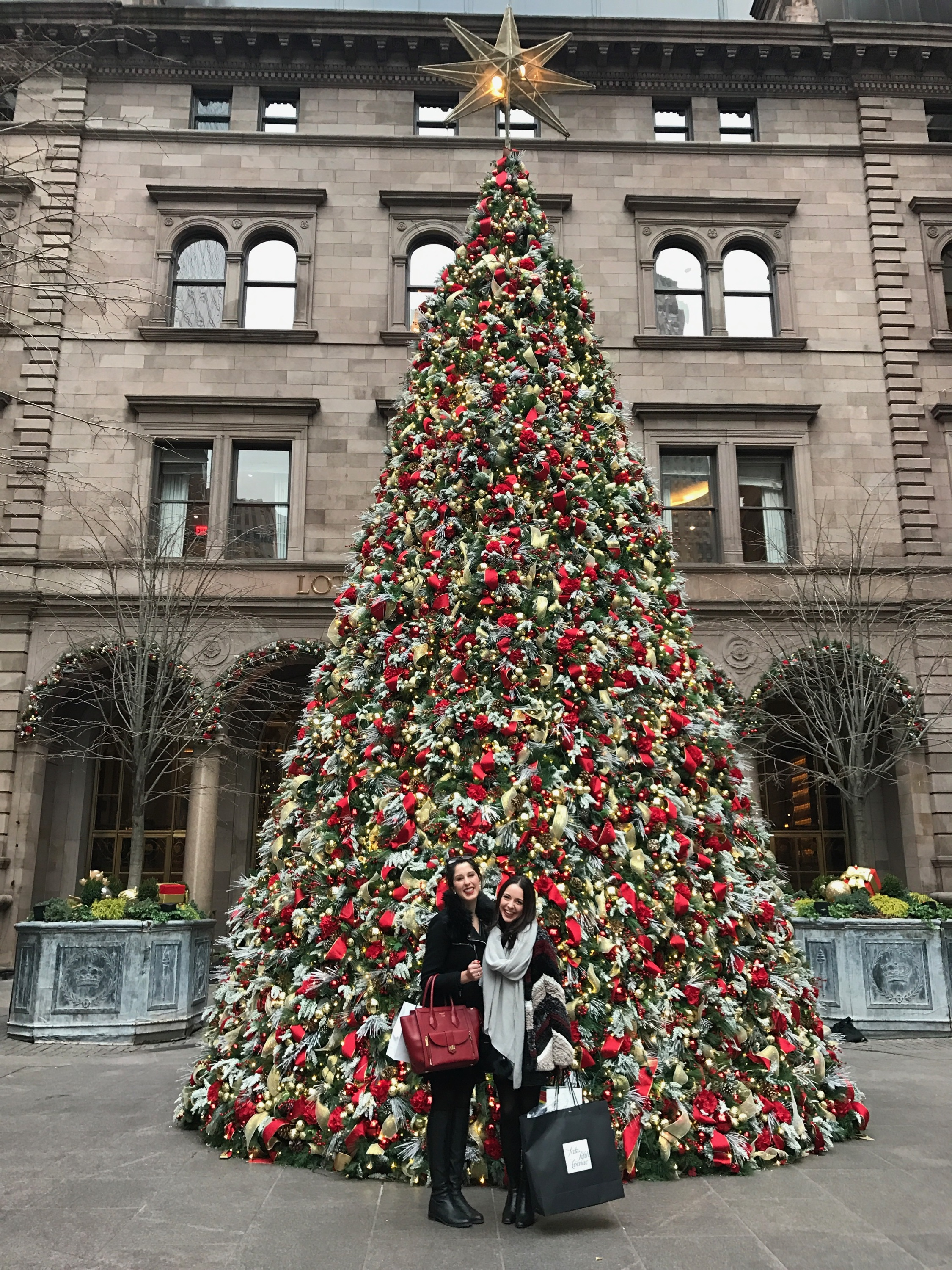 Posing in front of The Palace Hotel's Christmas tree... Has anyone seen Serena?