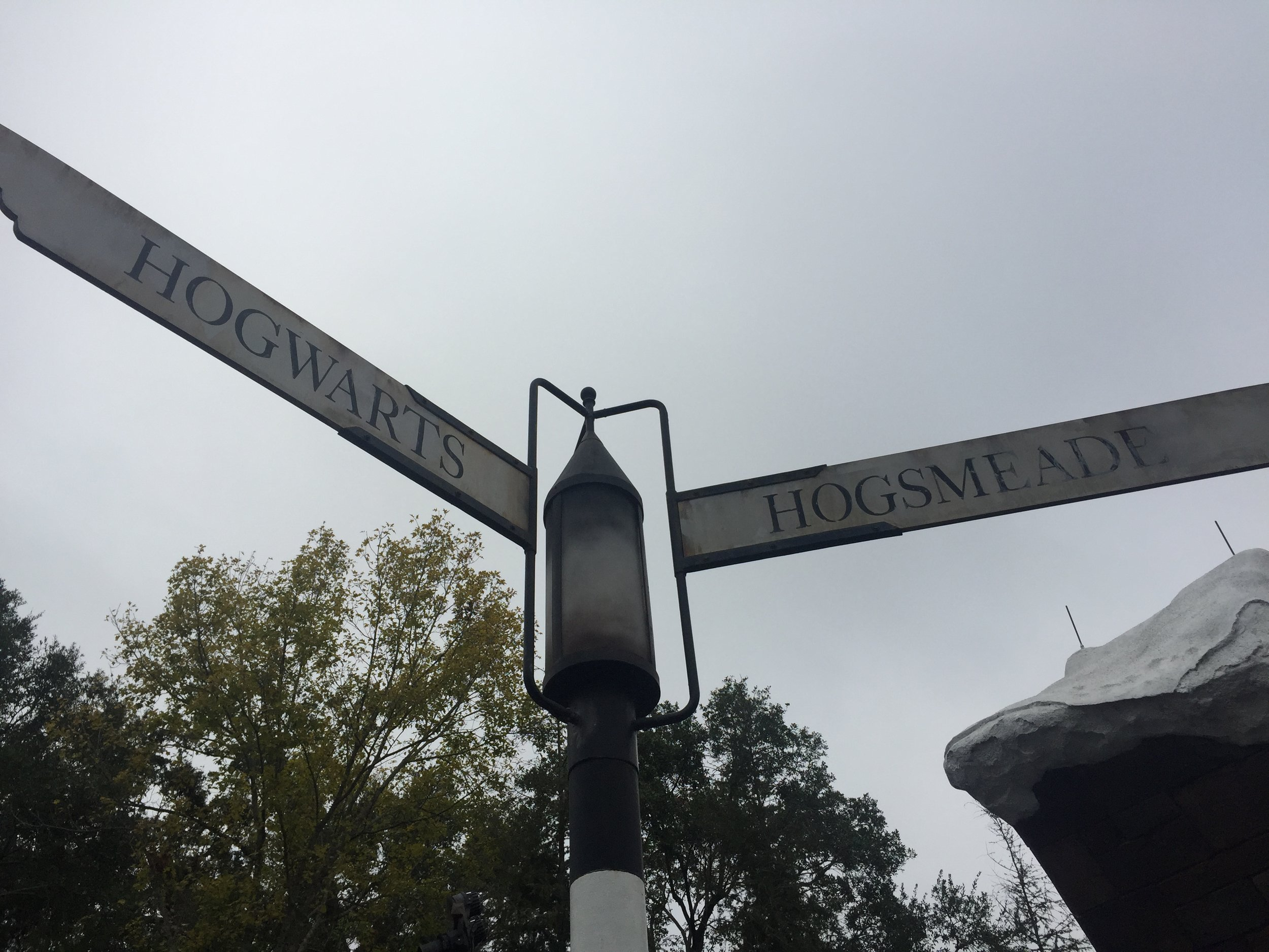 One of Vanali's most memorable experiences was visiting Harry Potter World in Orlando, FL.