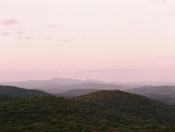 mountain-flower-inspiration-19