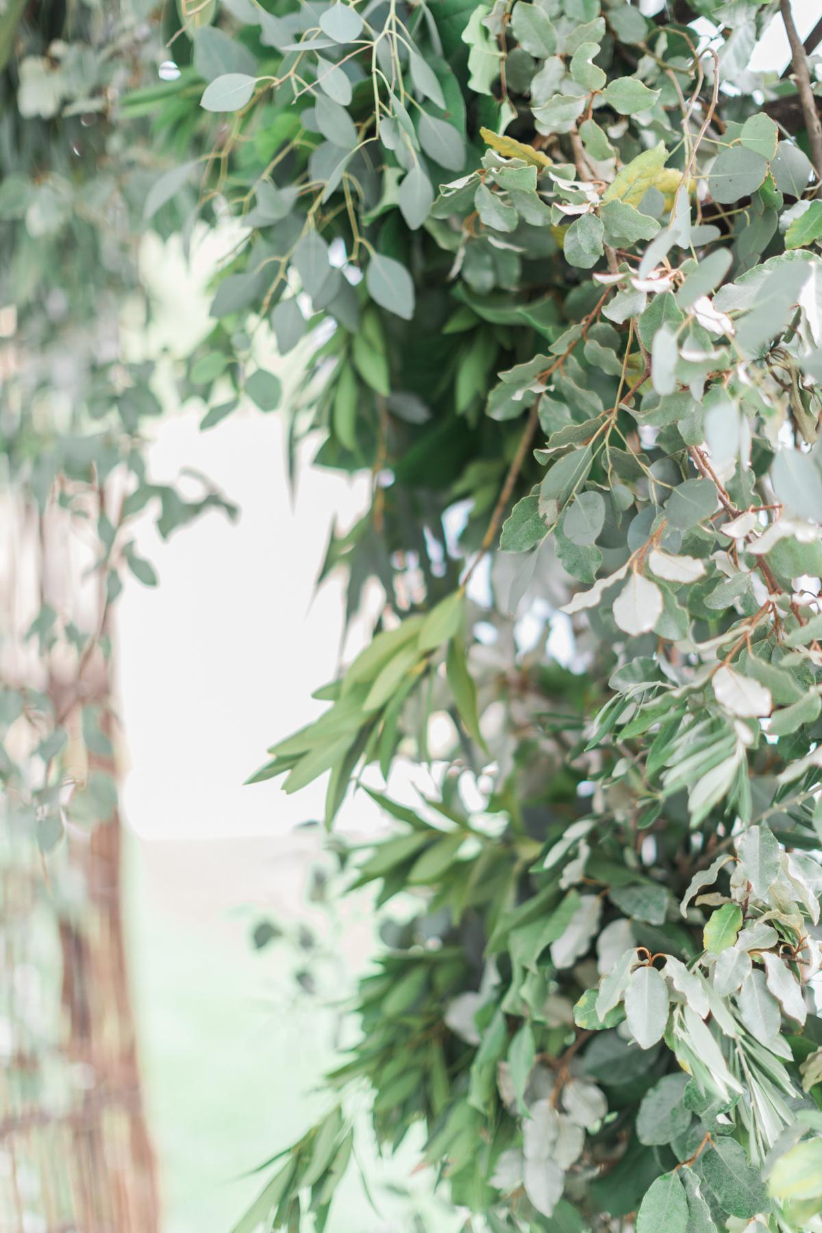 grove-park-inn-wedding-027.jpg