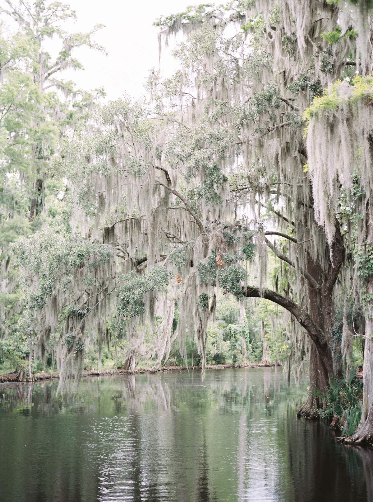 magnolia-plantation-charleston-engagement-010.jpg