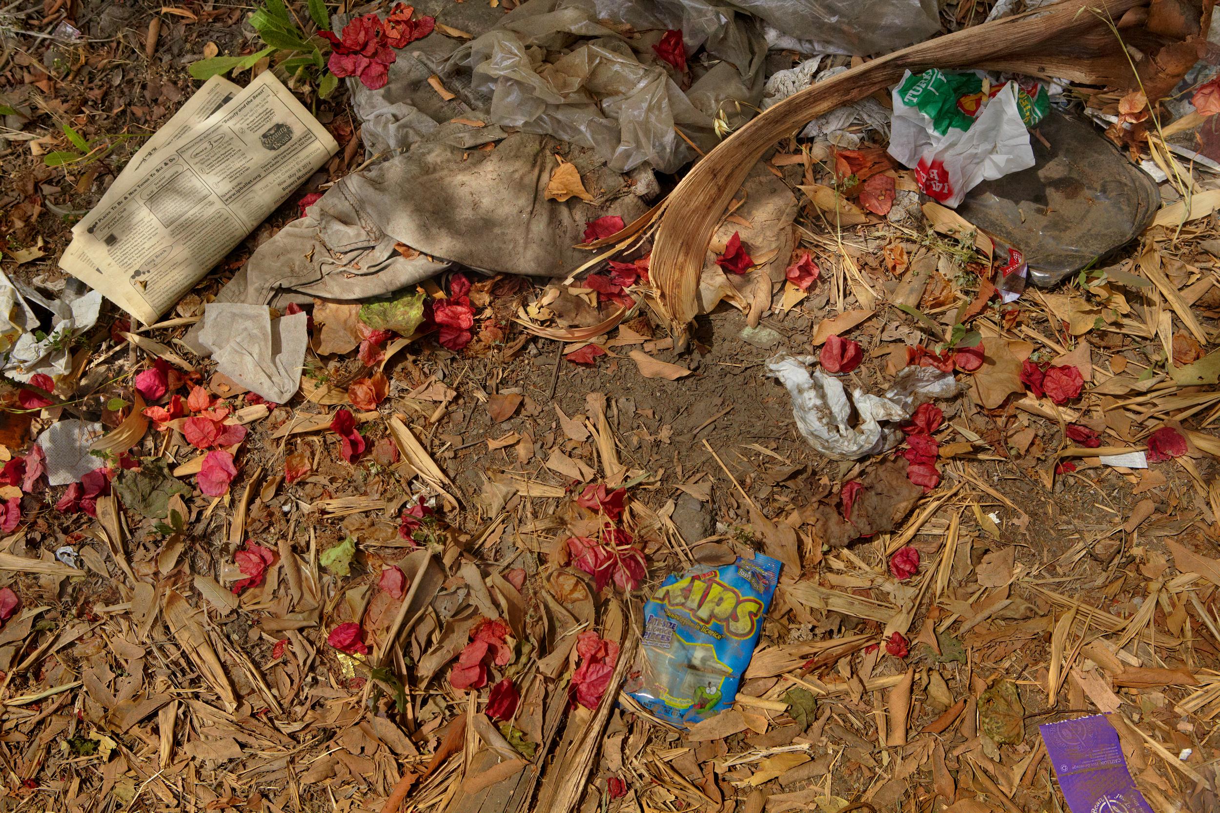 LA Trash Flowers.jpg
