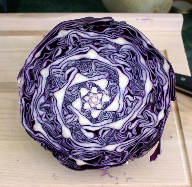 Fractal-Cabbage_670.jpg